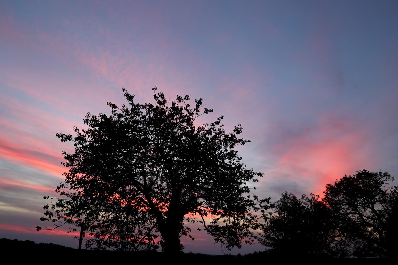 Ciel rose sur Chanceaux dans la côte d'or en Bourgogne