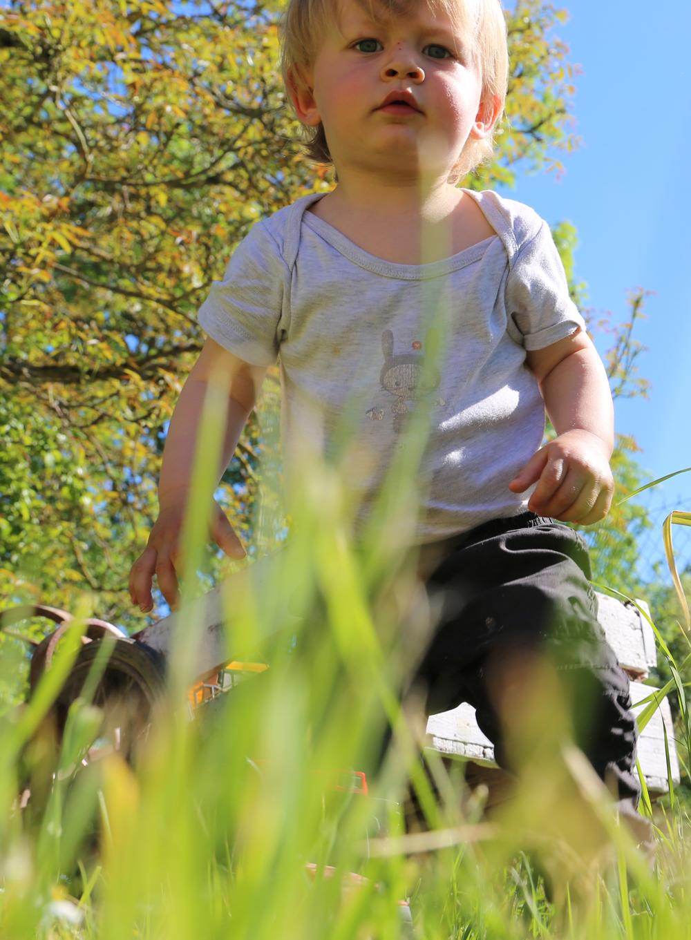enfant perdu dans les herbes hautes de la bourgogne